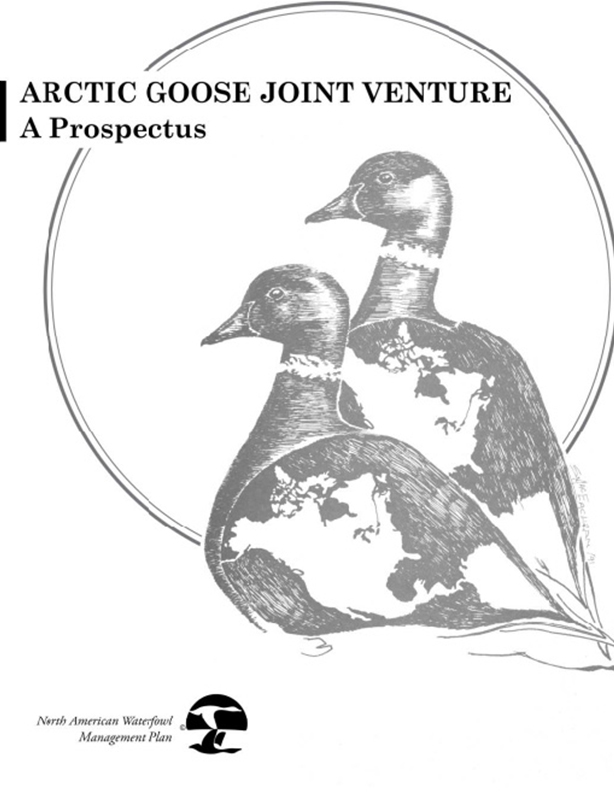 Prospectus du Plan conjoint des oies de l'Arctique (PCOA)