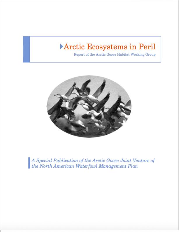 Les écosystèmes arctiques en péril