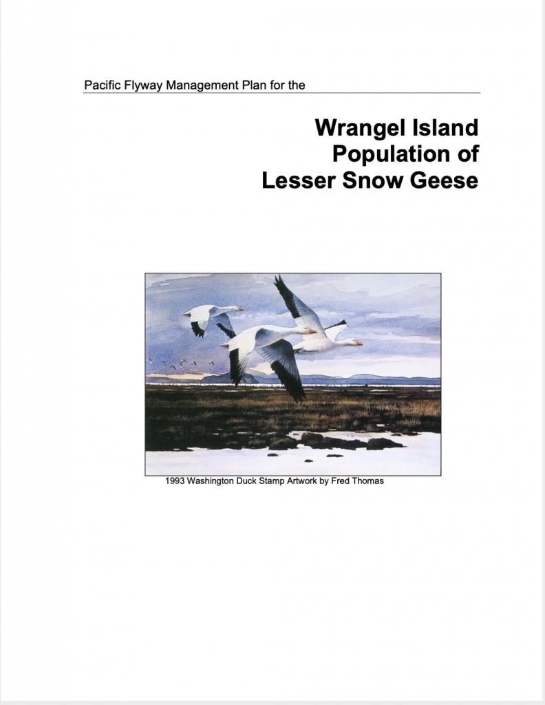 Plan de gestion des Petites Oies des neiges de l'Île Wrangel